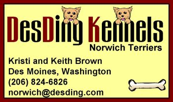 DesDing Kennels Business Card